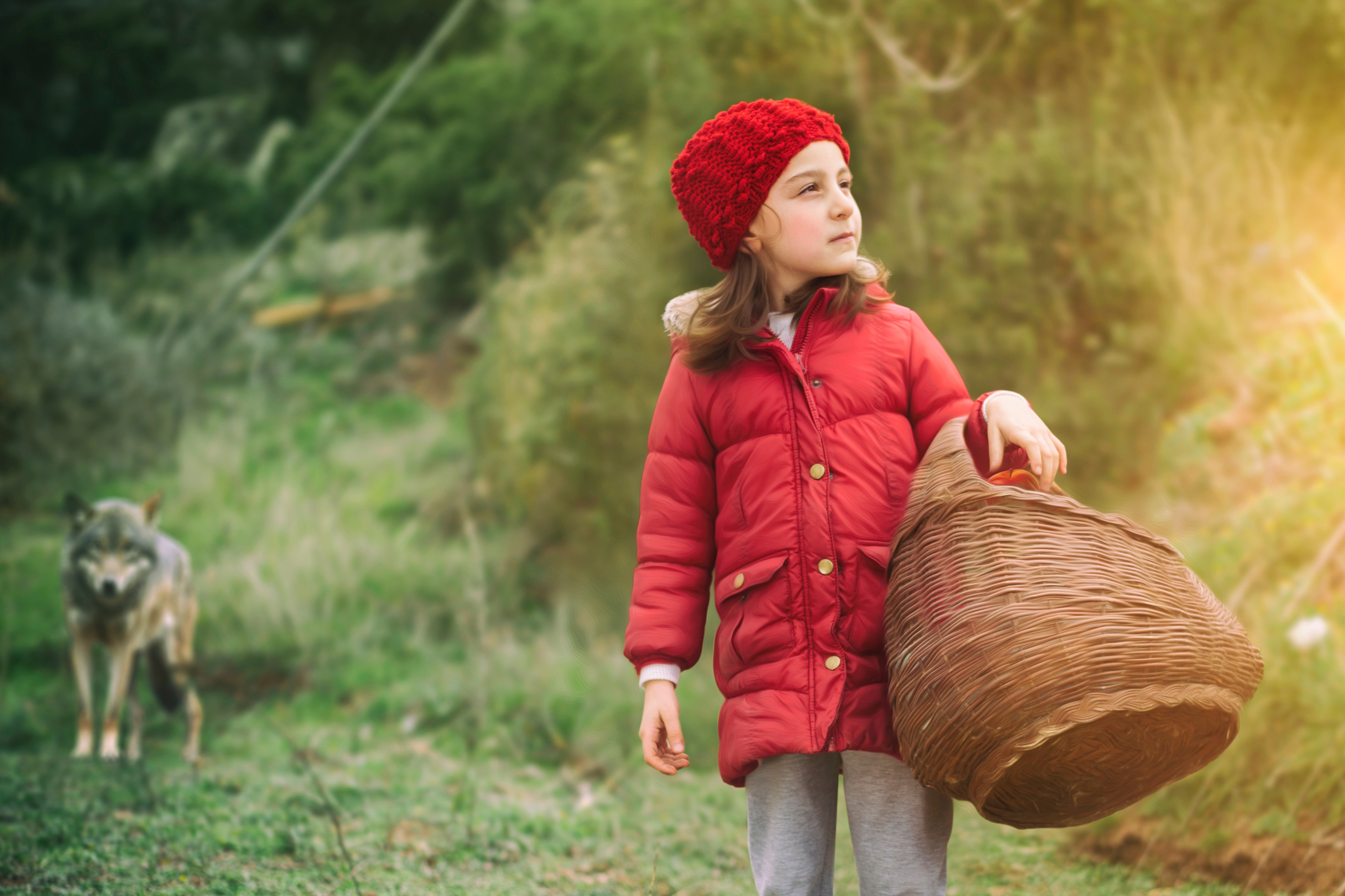 language learning story, little red riding hood, wolf